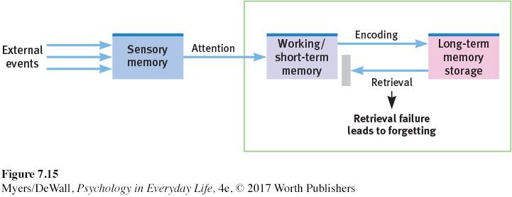 memory retrieval failure